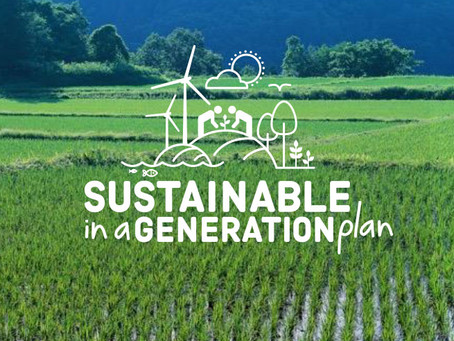 Unveiling Our Sustainable in a Generation Plan