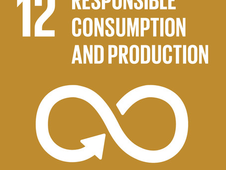 How Can Your Business Achieve Goal 12: Responsible Consumption and Production?