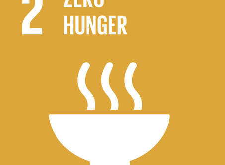 How Can Your Business Achieve Goal 2: Zero Hunger?