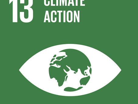 How Can Your Business Achieve Goal 13: Climate Action?