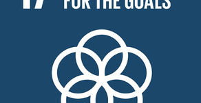 How Can Your Business Achieve Goal 17: Partnerships for the Goals?