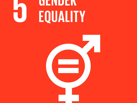 How Can Your Business Achieve Goal 5: Gender Equality?
