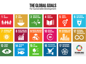 How will Each of the Major Parties Achieve the Global Goals?