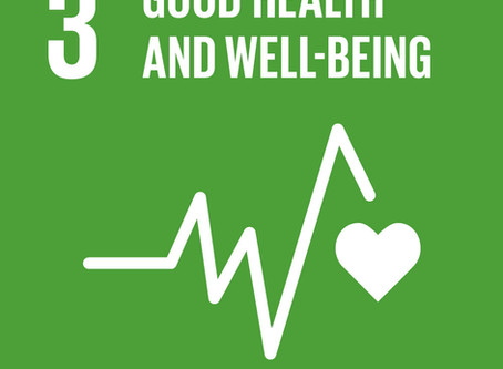 How Can Your Business Achieve Goal 3: Good Health and Well-Being?