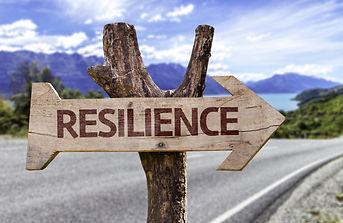 Resilience Wood Arrow.jpg