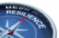Resilience Compass.jpg