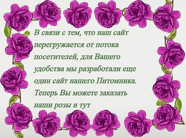 kisspng-purple-flower-rose-clip-art-rose