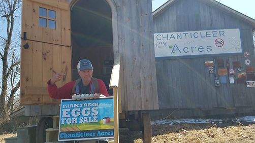 Harvey BEst shot with eggs sitting on st