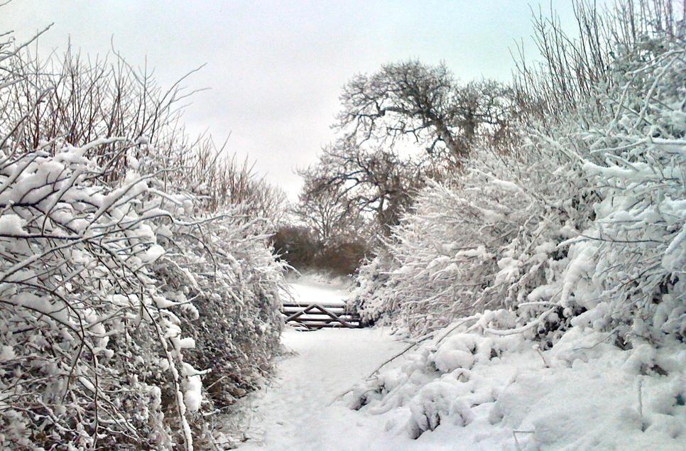 Rowhorne Farm in the Winter