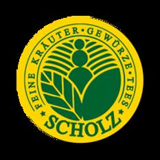 SCHOLZ Logo mit gelb.png