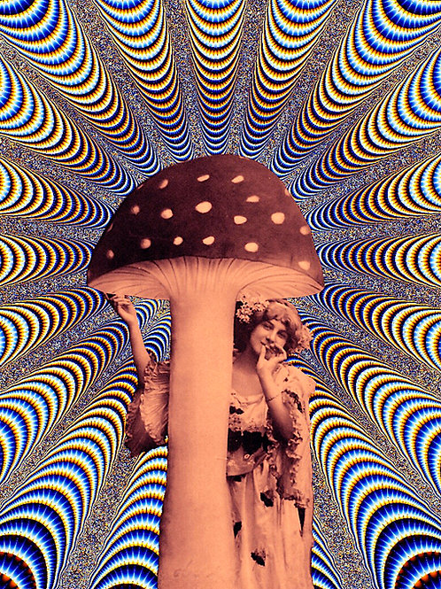 THE MAGIC MUSHROOM.
