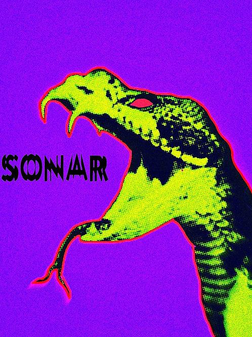 SONAR Streetwear Snake Poster