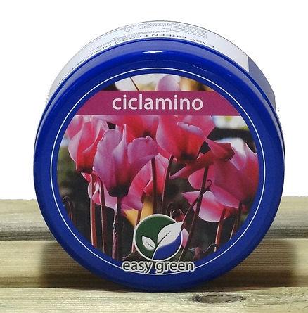 Easy Green concime Ciclamino