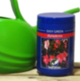 Easy Green concime Dipladenia