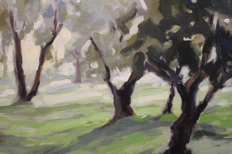 Tuscan Olive Grove - Detail