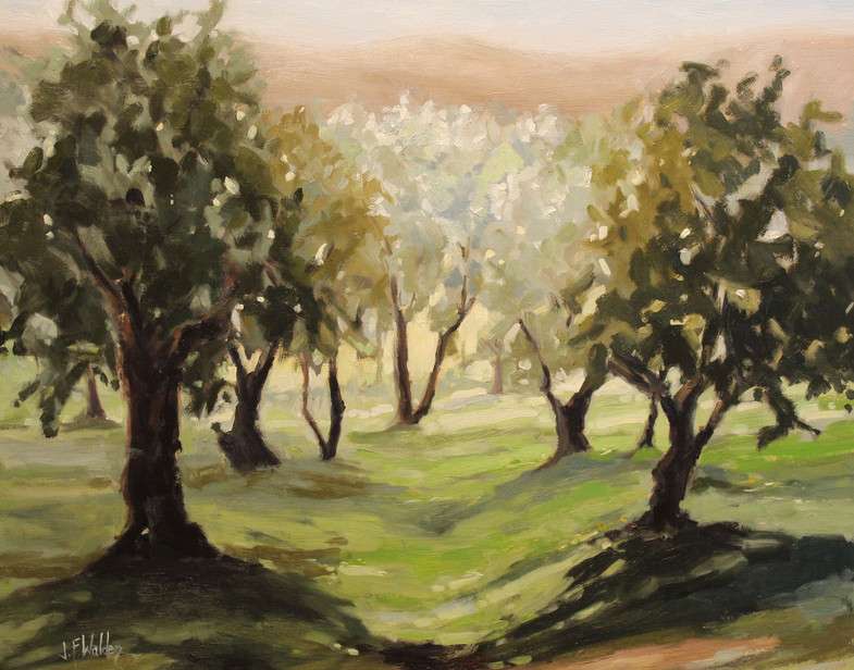Fuscan Olive Grove