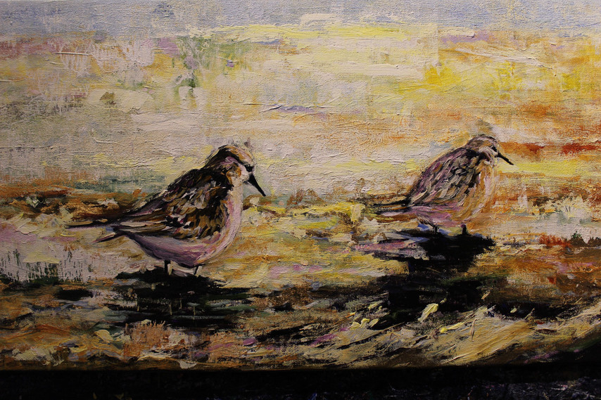 Sandpipers - Detail 2