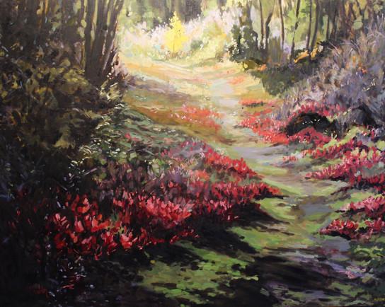 Blachford Path
