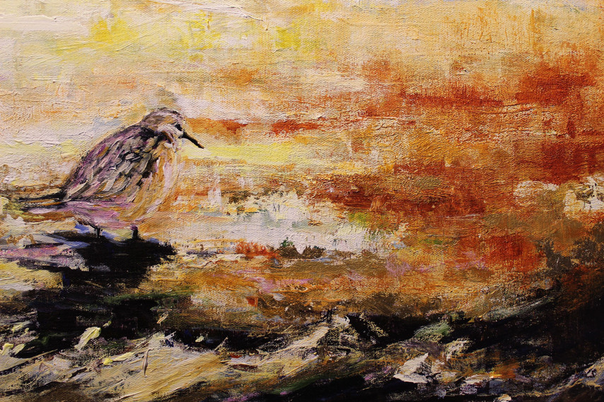 Sandpipers - Detail 3