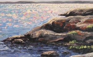 Mosher Island Swimming Hole