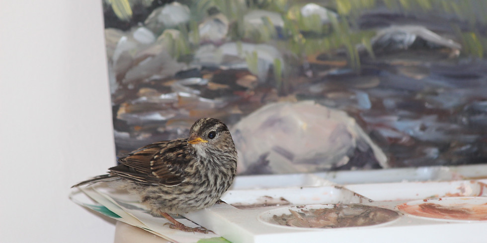 Private Painting Workshops (pending availability)