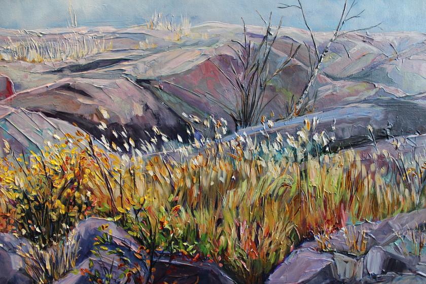 Yellowknife Rocks - Detail 2