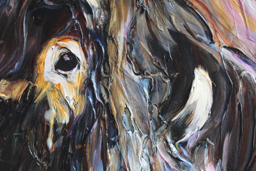 Muskox - Detail 2