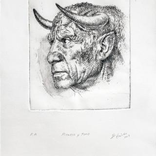 Picasso y toro.