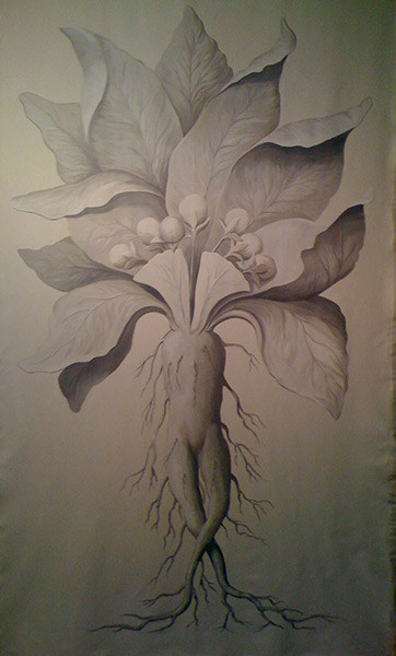 Dominican Republic grisaille botanical 9ft by 5t on canvas