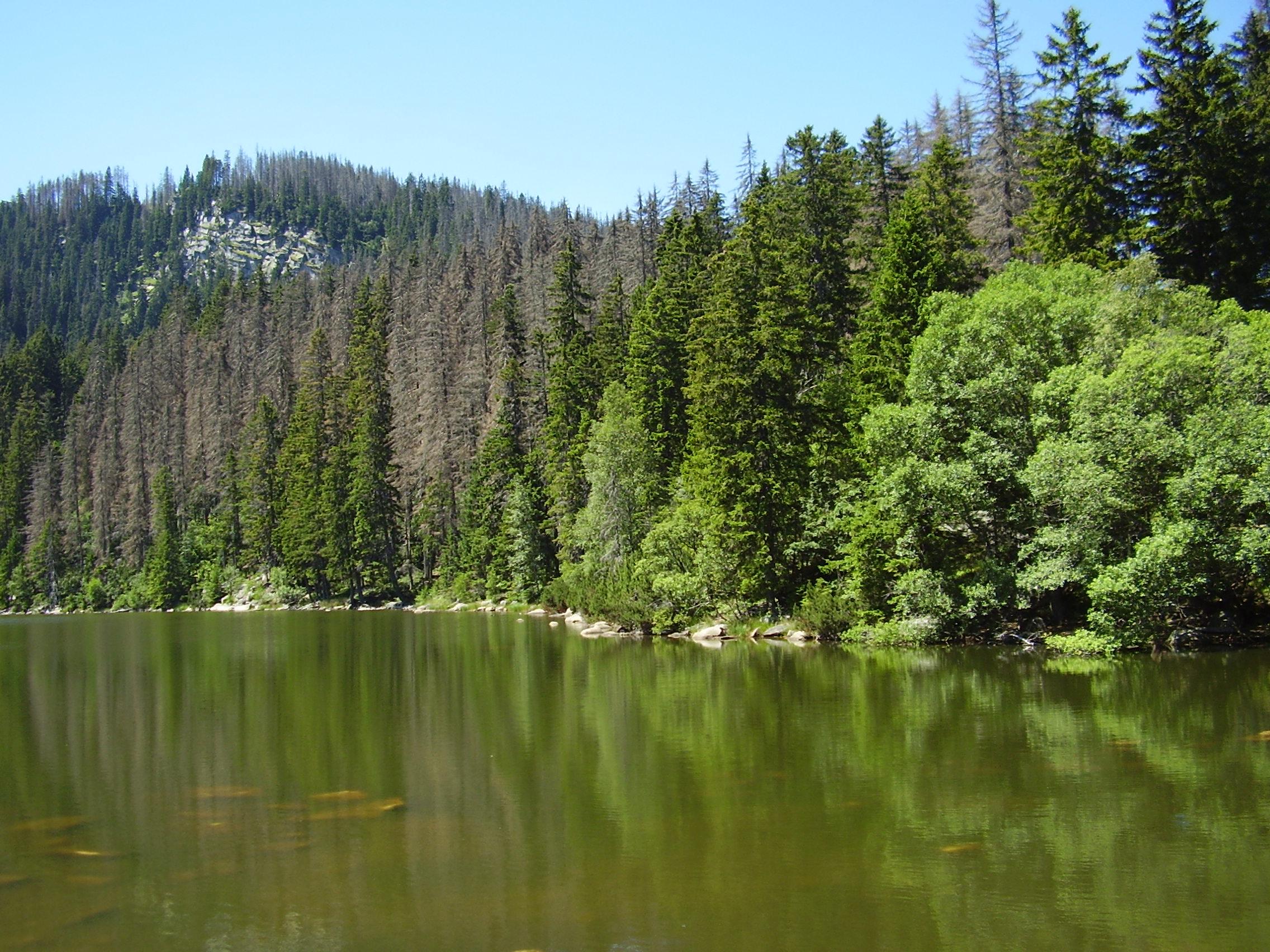 Plešné jezero (9 km pěšky)