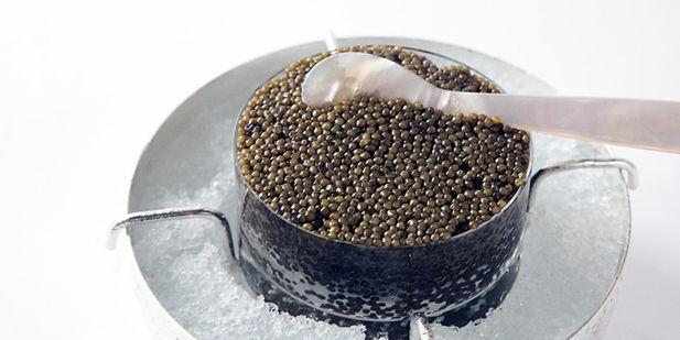 caviar conserve.jpg