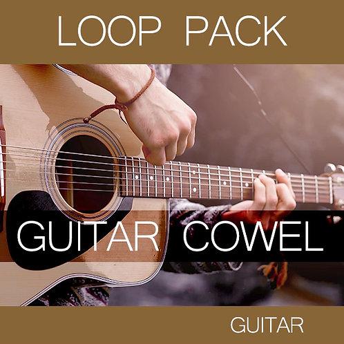 Guitar Cowel