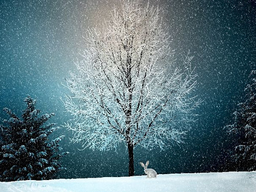 Ecco com'era il Natale d'altri tempi in Valsugana...