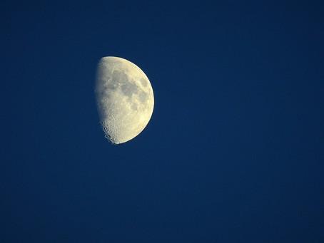 Oggi arriva la Luna nuova in Cancro