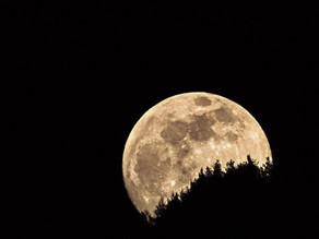 La Luna Piena del 31 ottobre 2020 in Toro