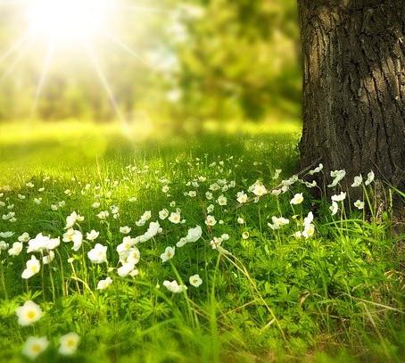 """Aprile: il mese della """"rinascita della natura"""""""