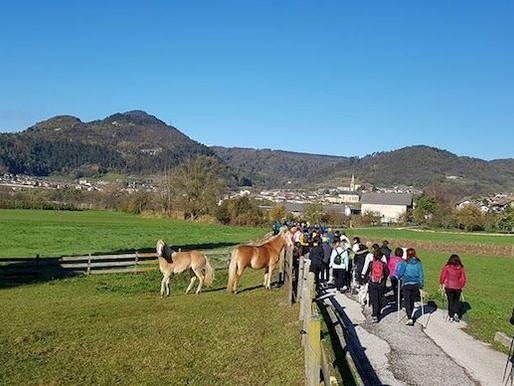 A Civezzano, in 170 sui sentieri della solidarietà