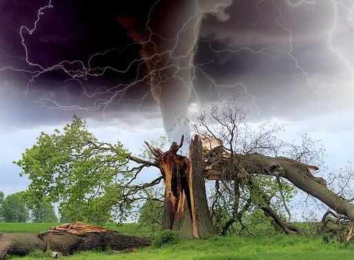 I cambiamenti climatici? Non mettono a rischio la sopravvivenza del pianeta, ma la nostra presenza