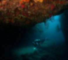 Saba's best dive sites