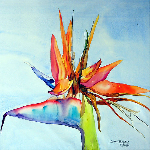 Bird of Paradise pillow-Heleen Cornet