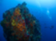 Saba' Dive Sites - The Eye of the needle.