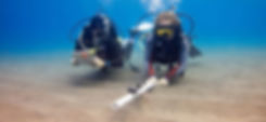 PADI Eco Immersion - This project based adventure program is an enlightening and rewarding experience for any diver to enhance your awareness of the underwater world.