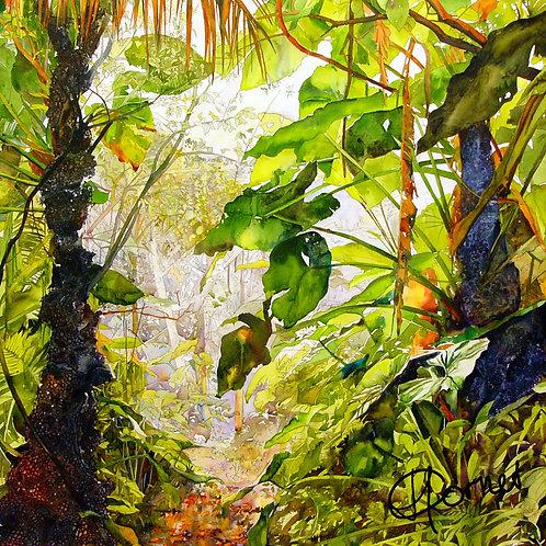 Saba Cloudforest pillow-Heleen Cornet