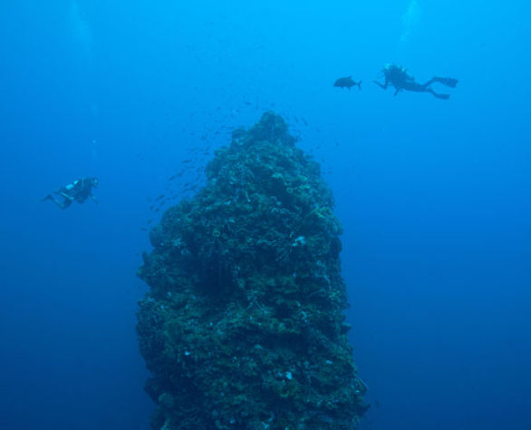 Dive volcanic Pinnacles of the shores of Saba