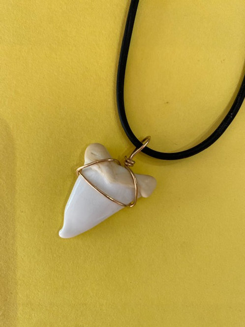Glass Shark Tooth Necklace