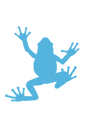 small blue frog.png