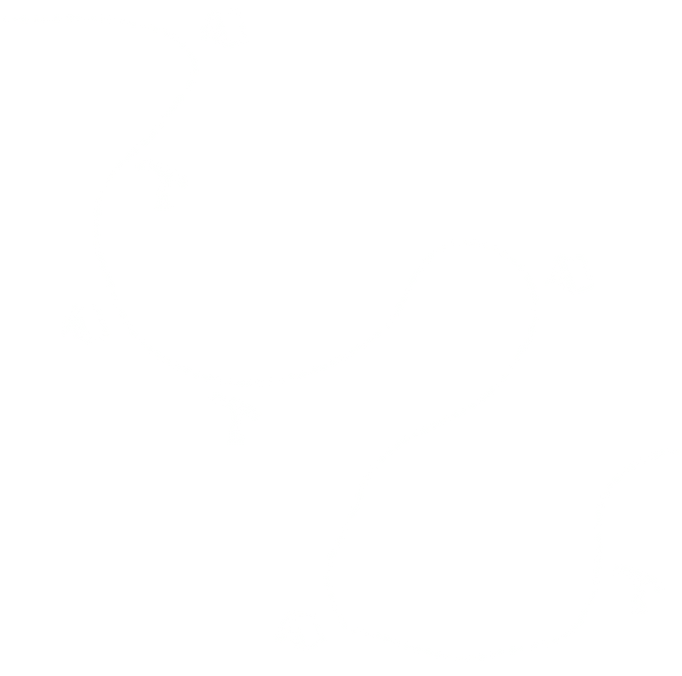 Trail%20Route%20Line%20Graphic_edited.pn