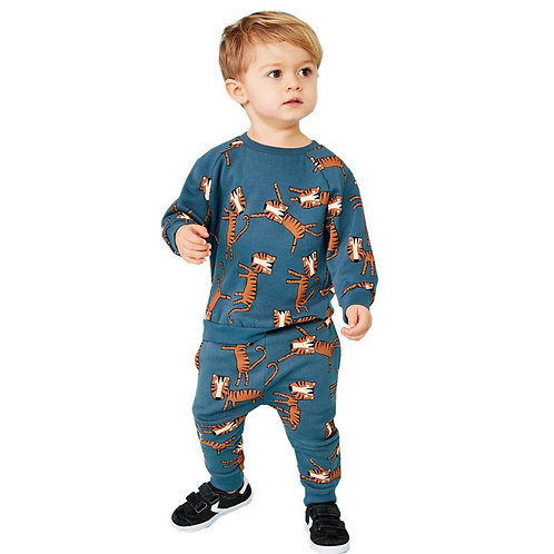 Cartoon Tiger Printed Boys Girls Outfit