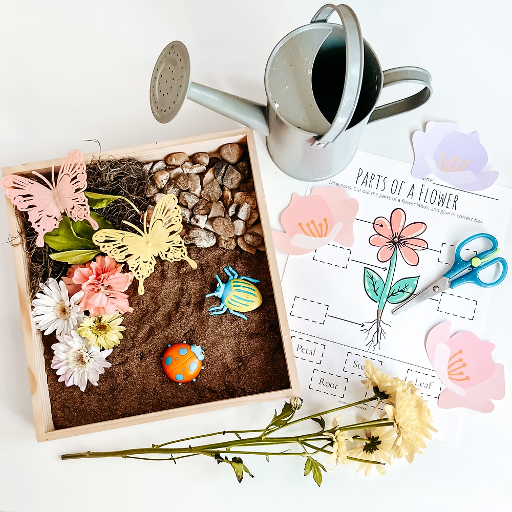 free printable parts of a flower cut and paste labels