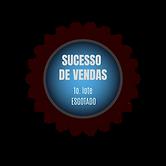 SUCESSO DE VENDAS! 1o. lote ESGOTADO (1)